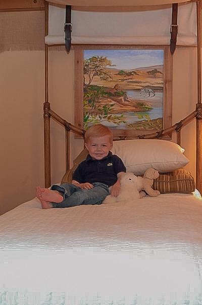 boys room ideas, 11 Ways To Design A Sophisticated Safari Adventure  Bedroom | Boys Room Ideas